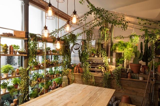airbnb-pantone-greenery-04